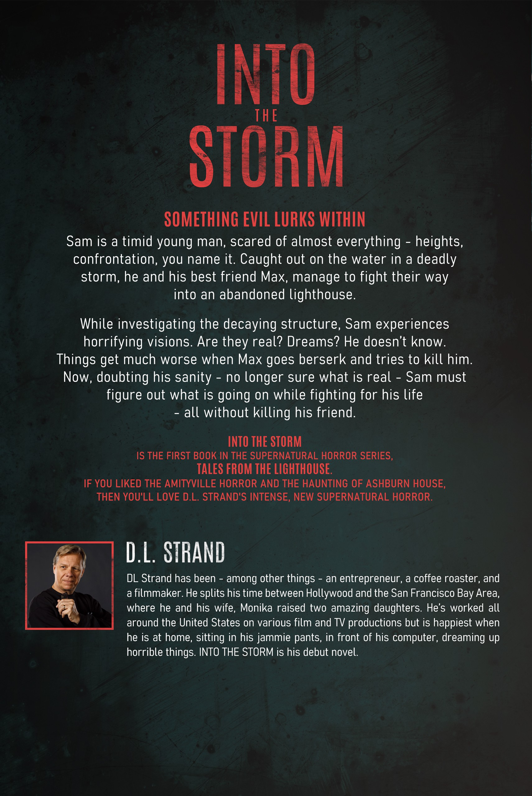 Into the Storm - Tales From the Lighthouse Book 1