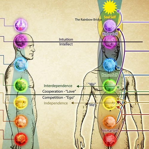 Energy Field and Chakras