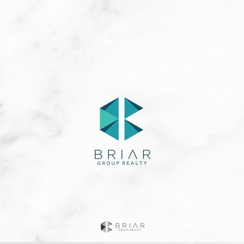 Clean yet modern logo for Briar Group Realty