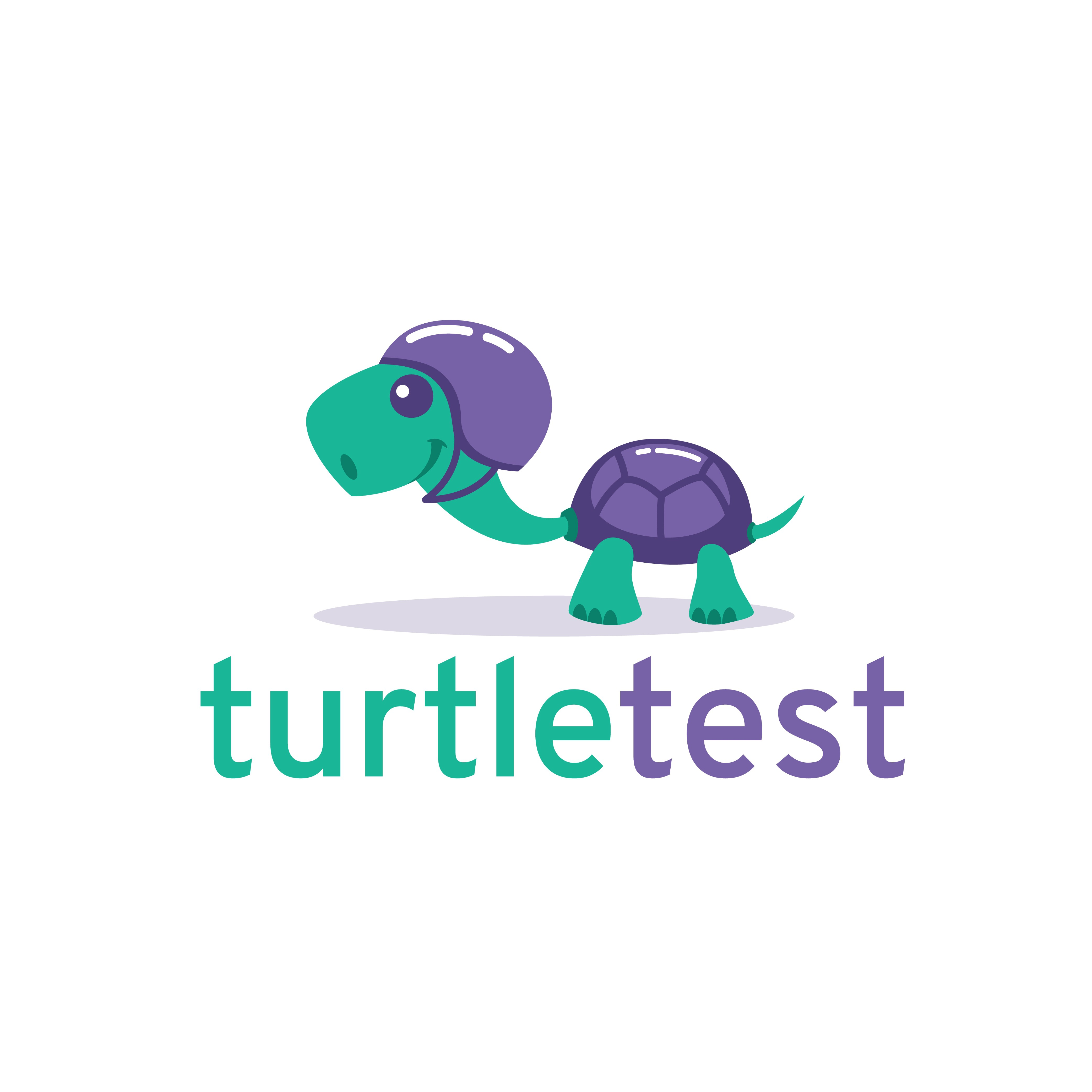 Create a logo for turtle test!
