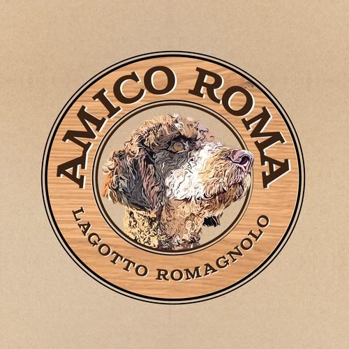 Amico Roma Lagotto Romagnolo breeders