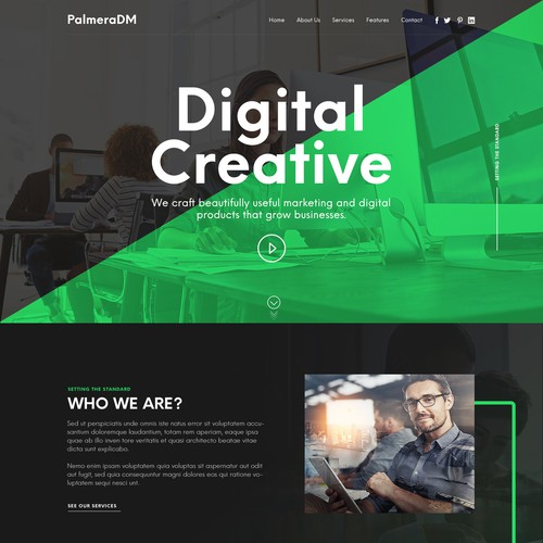 Homepage design for a PalmeraDM