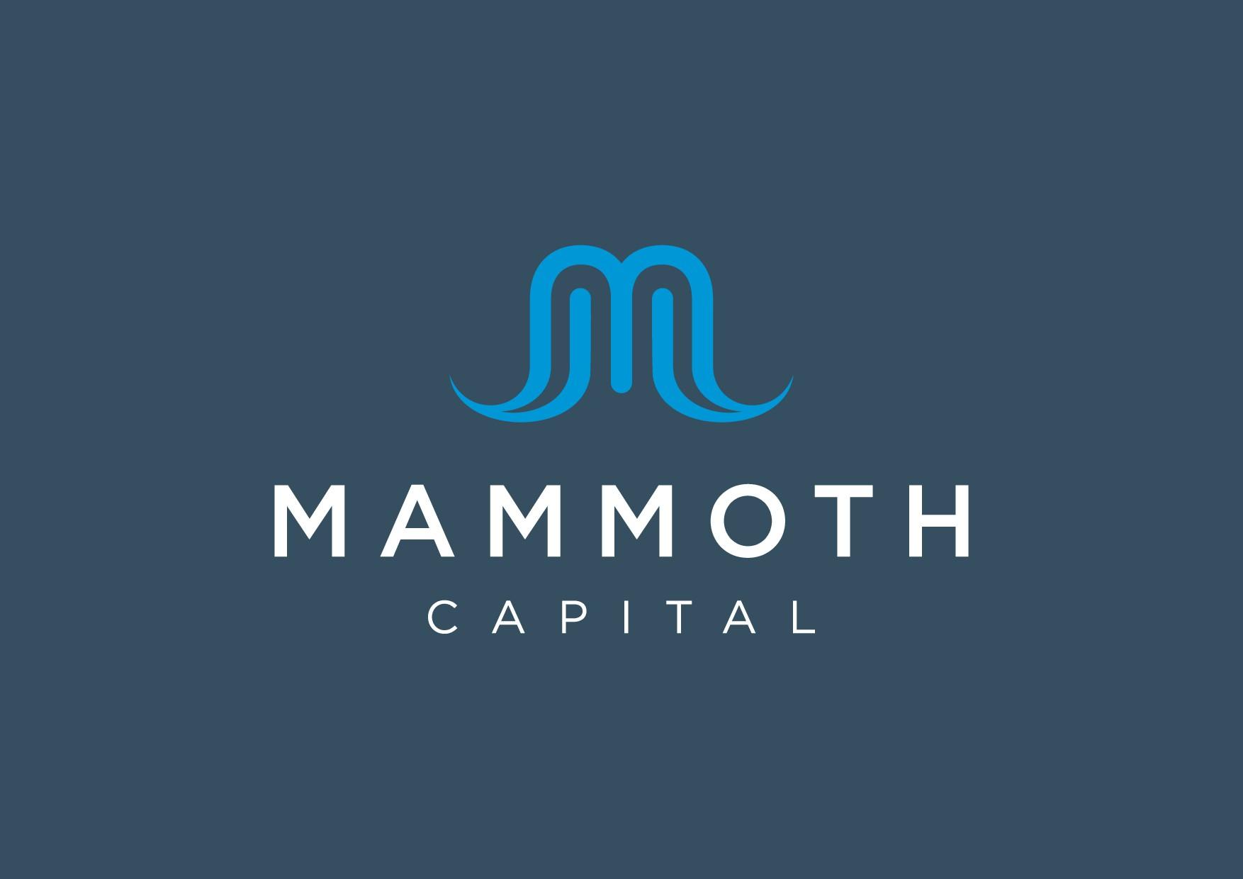 Company logo needed for finance company