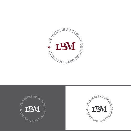 GUARANTEED : Logo design for accounting firm & auditorship