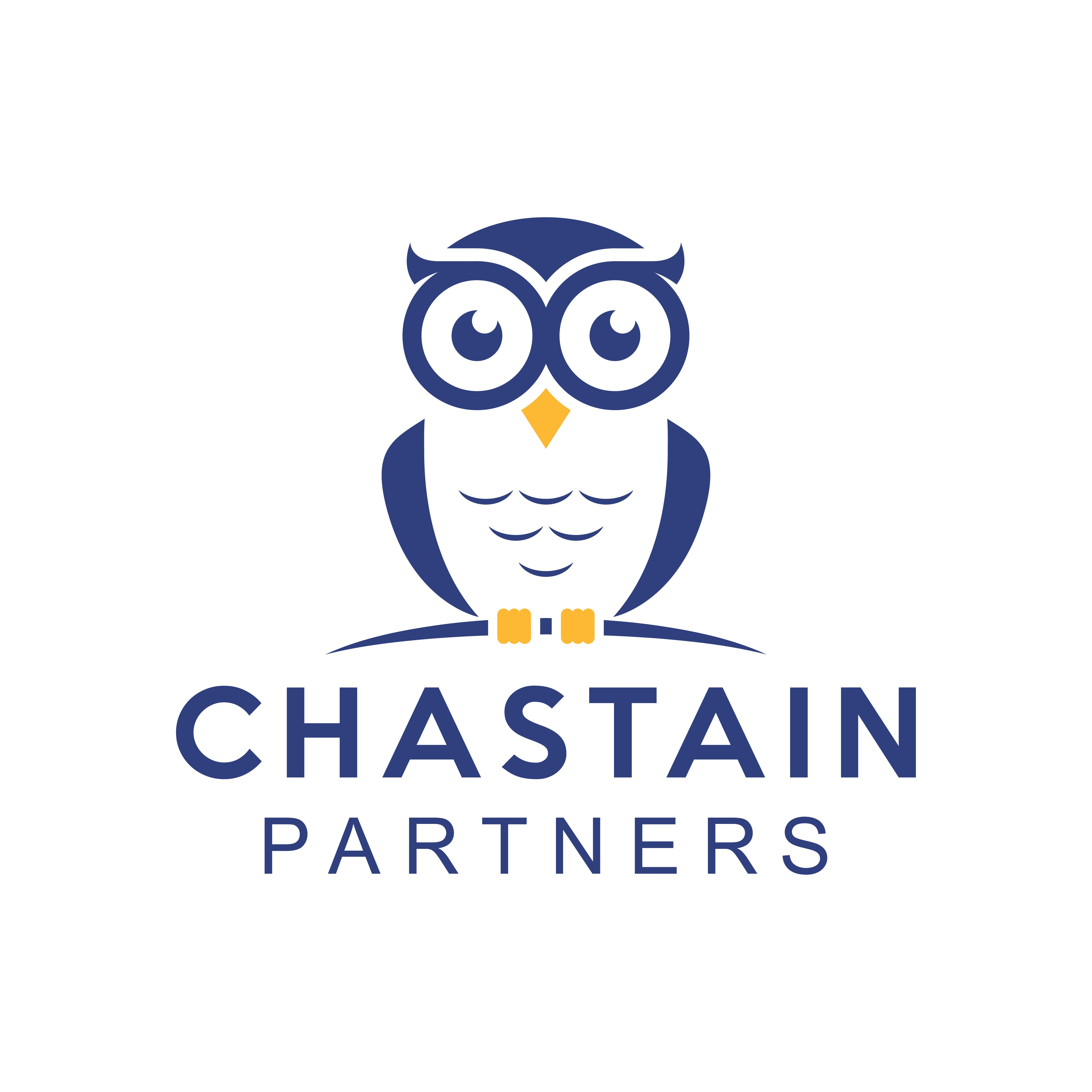 Chastain Partners Accounting, perhaps a fun owl logo?!