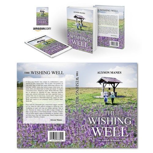 "Book cover for ""The Wishing Well"" by Alyson Manes"
