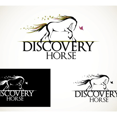 AWESOME Logo for Changing Lives with Horses - Equine Assisted Life Coaching