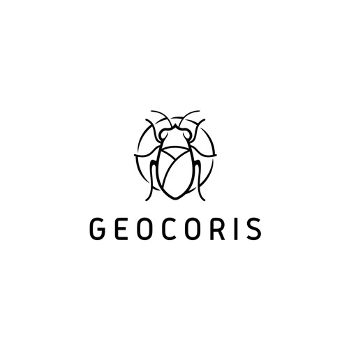 geocoris