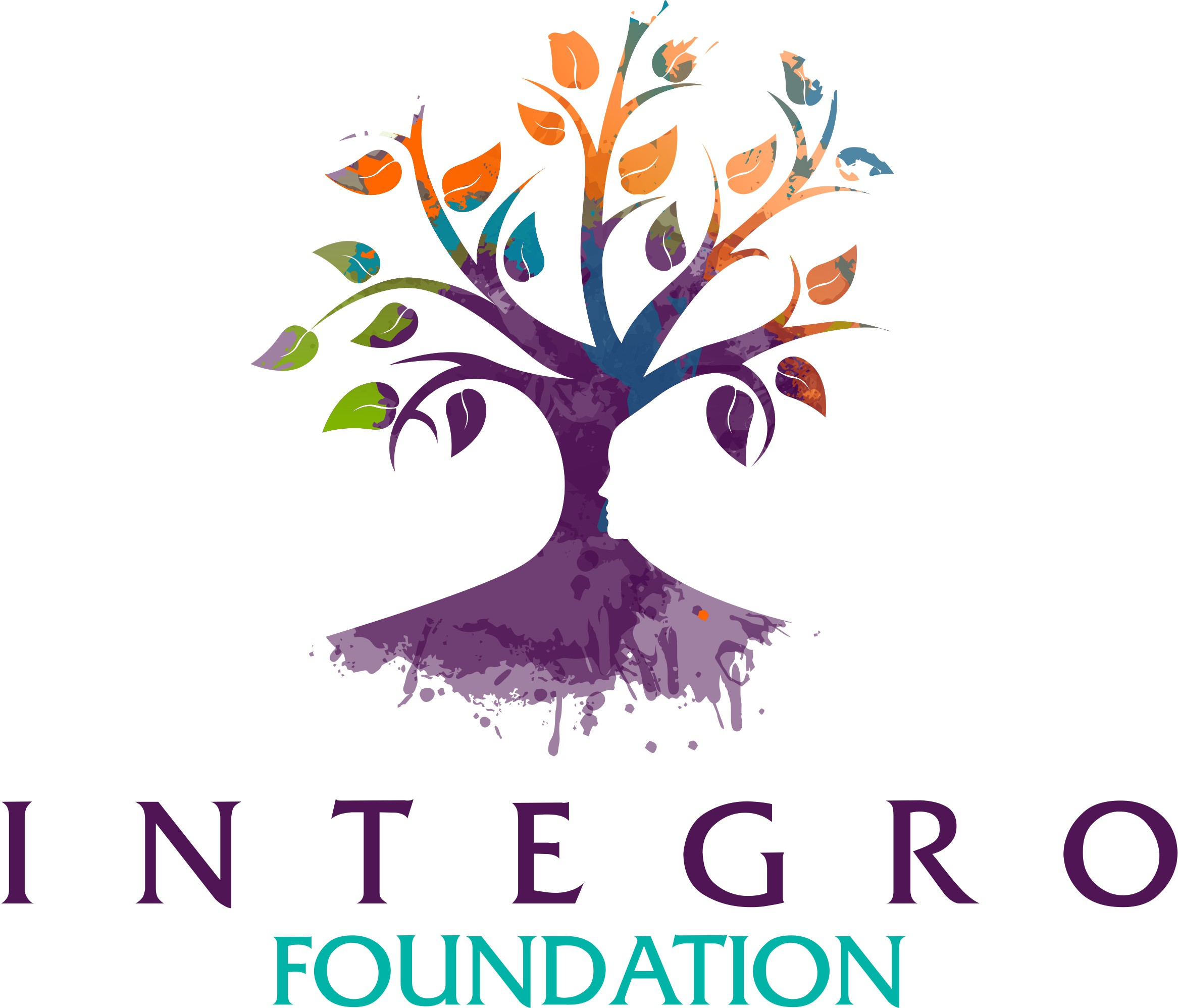 Integro Foundation