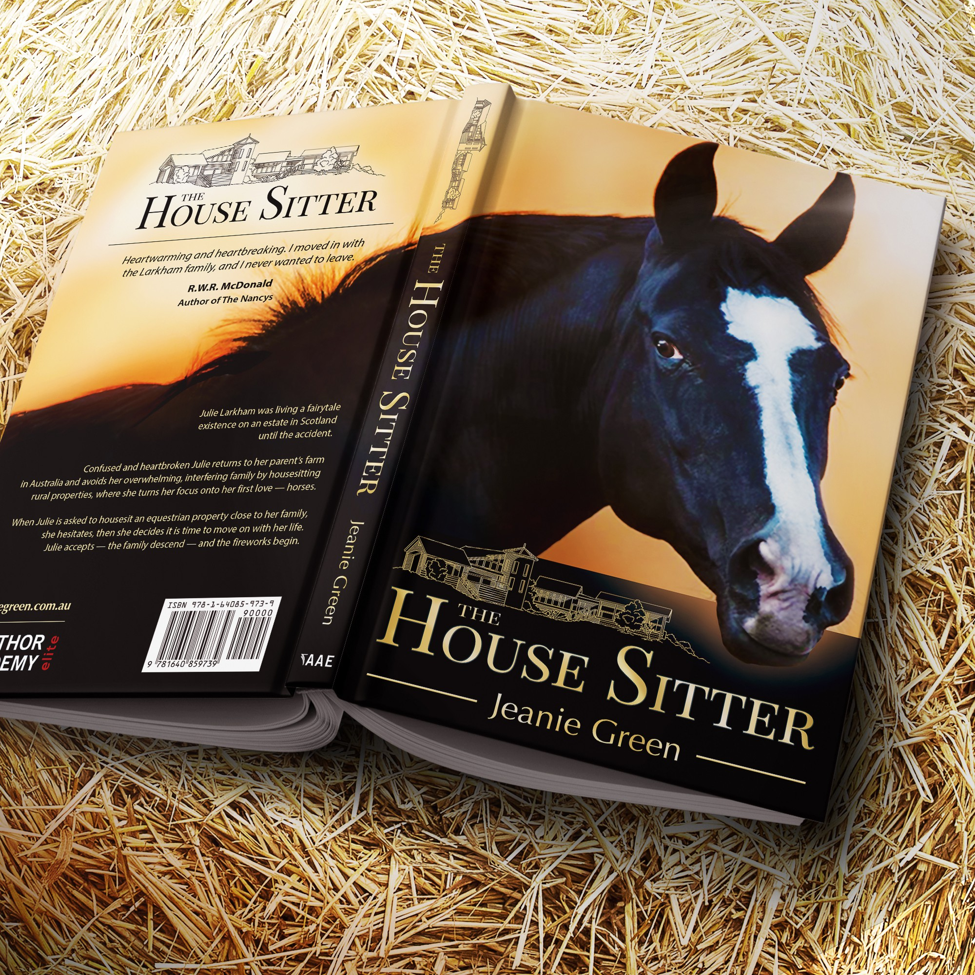 "Presentation image of the book ""The House Sitter"""
