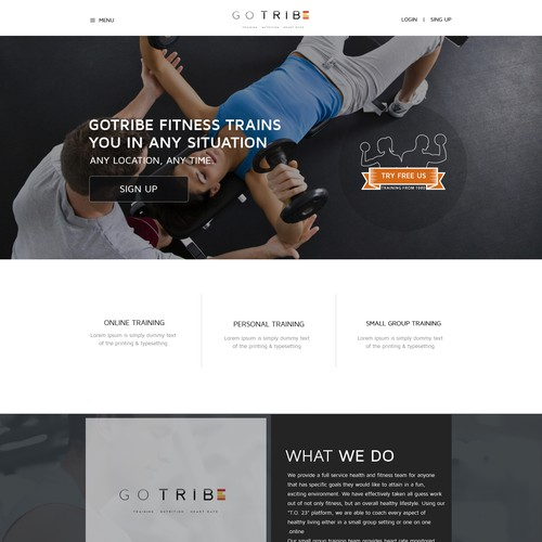 Design a clean & modern Wordpress Theme
