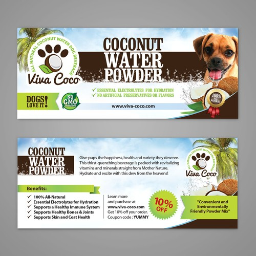 Viva Coco Flyer
