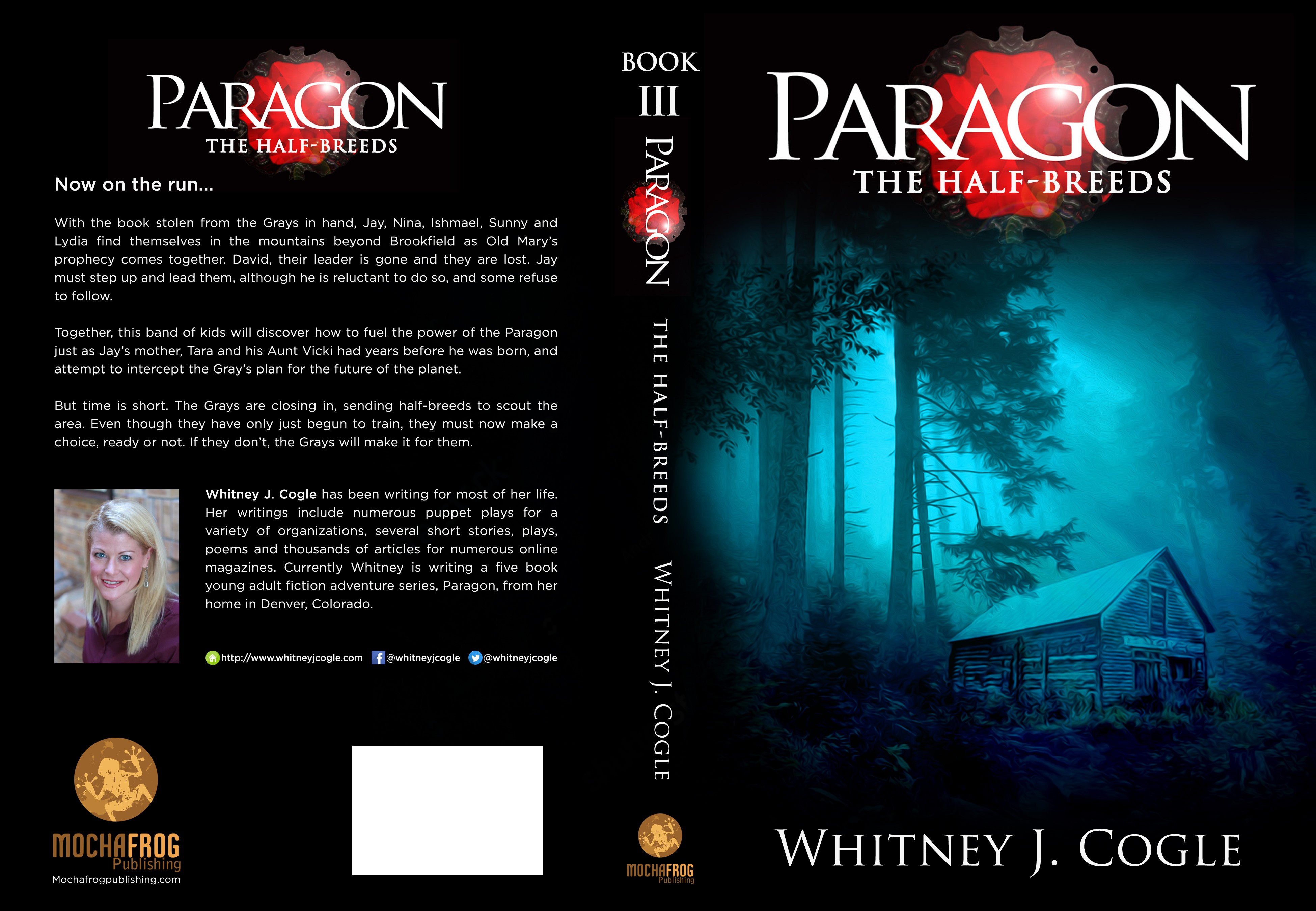 Young Adult - Paragon Book 3 Cover Design