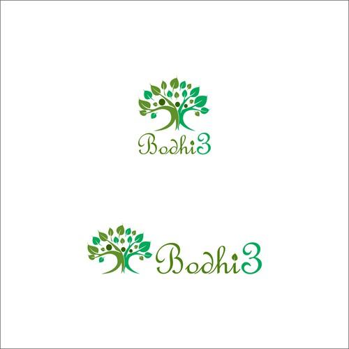 Bodhi3