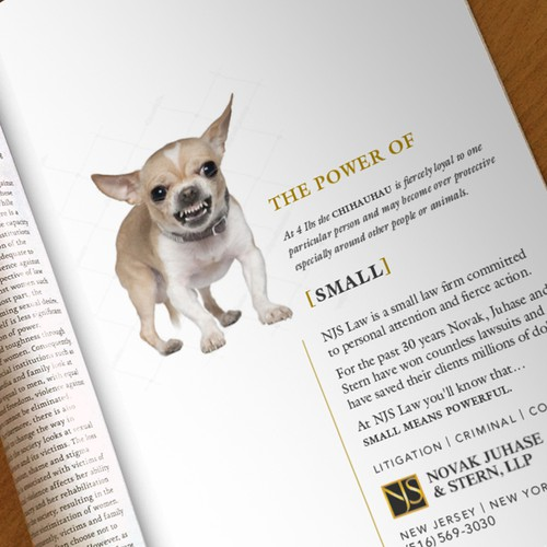 Print Ad for Small Law firm