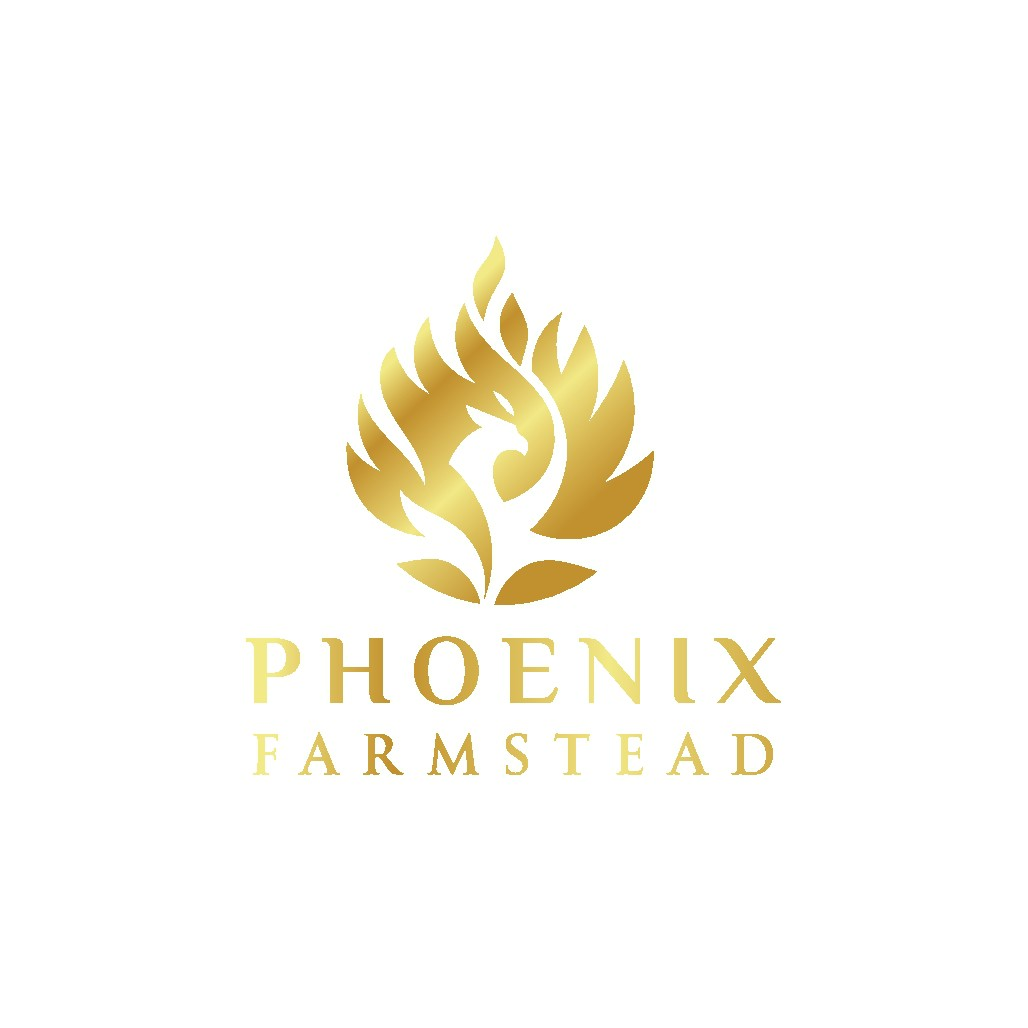 logo for Phoenix Farmstead.  A startup regenerative farming/ edu hospitality business.