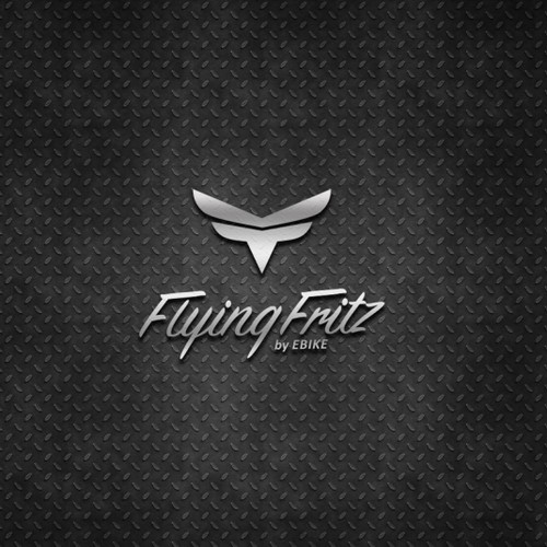 Flying Fritz by EBIKE contests