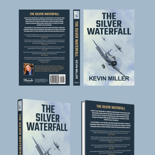 "Book cover for title ""The Silver Waterfall"""