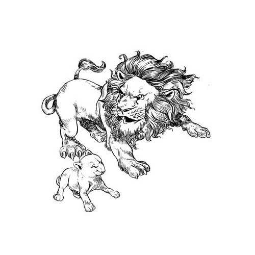 Father lion and cub Illustration