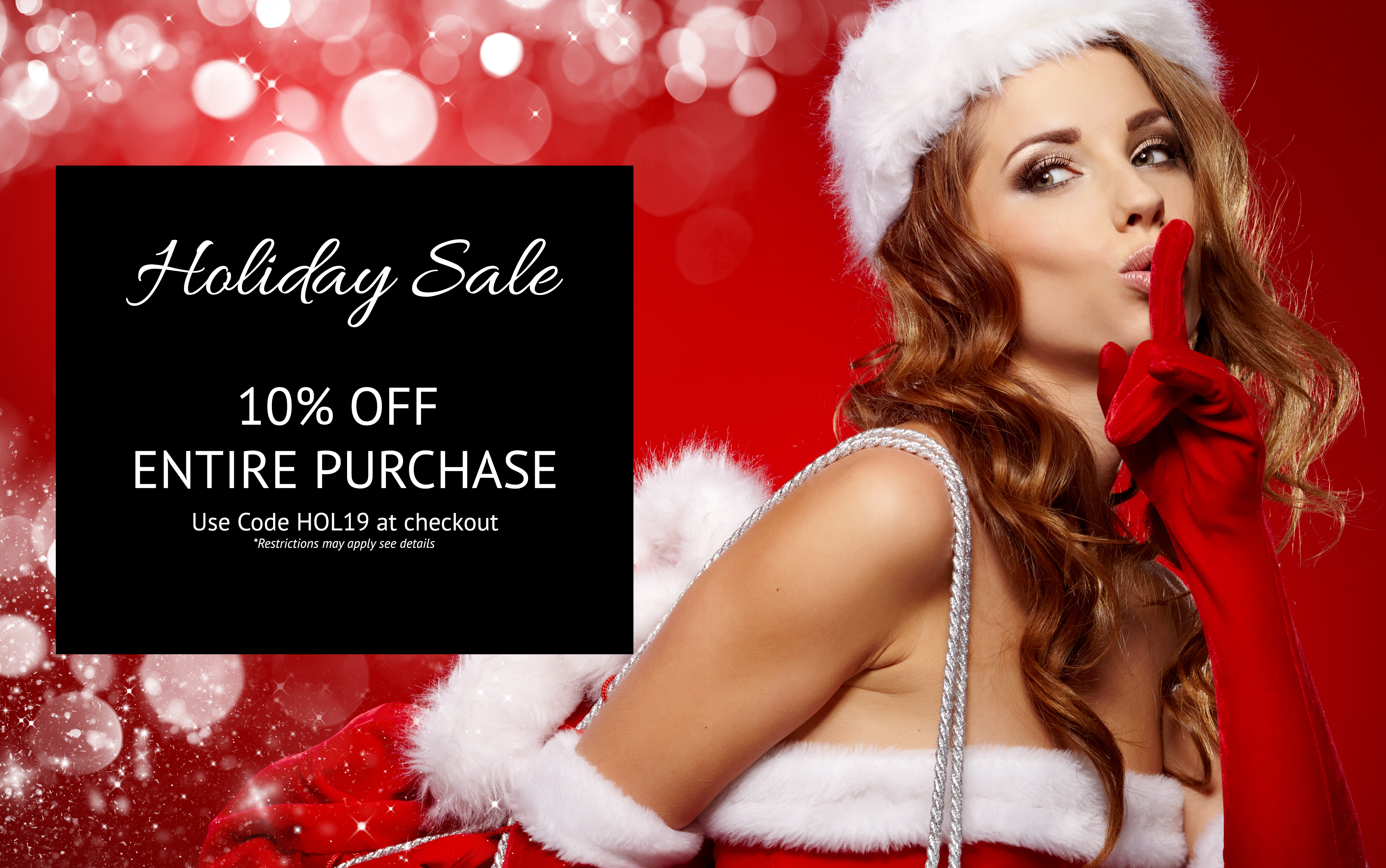 Holiday Sale Landing Page Image