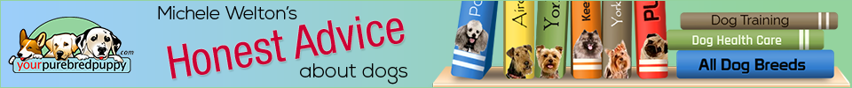 Love puppies? Add your creative touches to the banner/header of yourpurebredpuppy.com