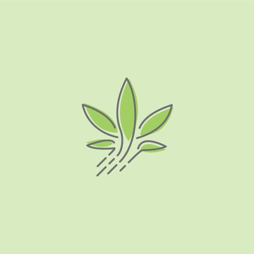 High Quality Raw Medical Cannabis