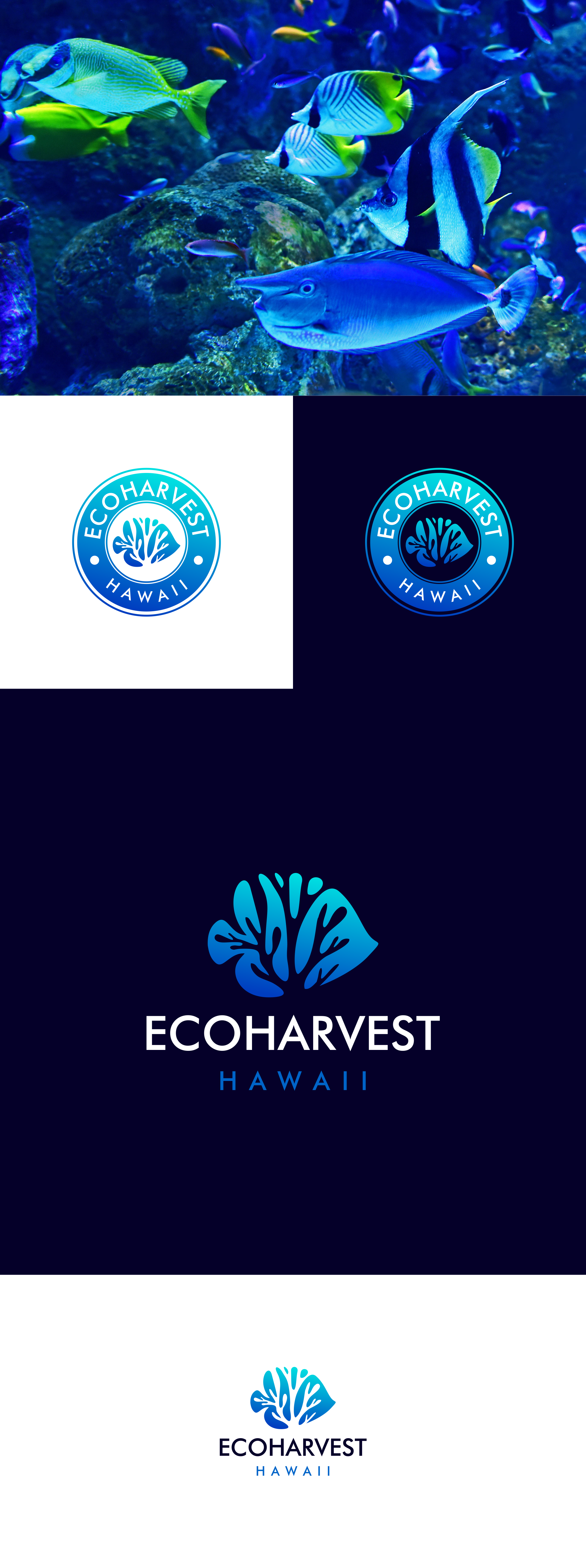 We need an amazing logo for our sustainable Hawaiian reef aquarium fish business.