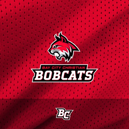 High School  Sports team logo proposal