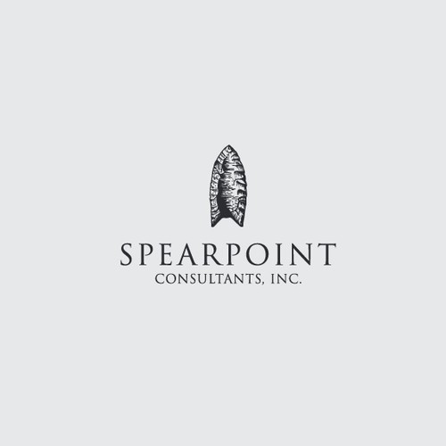 Boutique Project Management and Consulting Firm logo Design & Branding