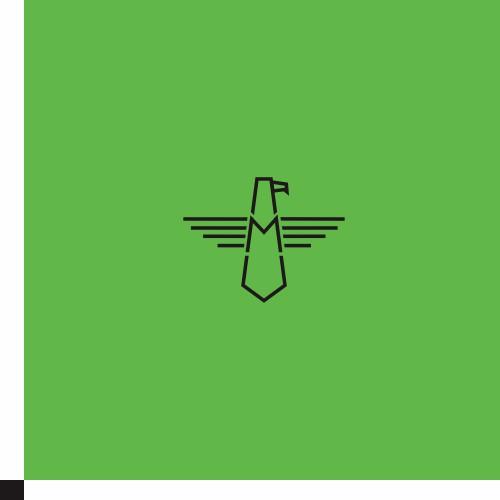 Logo for Maverick Brands