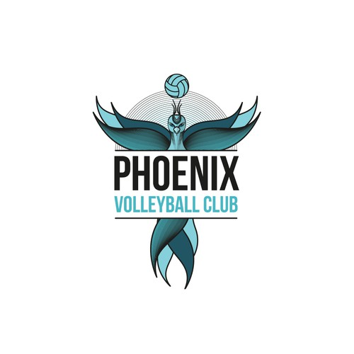 Logo for Volleyball Club