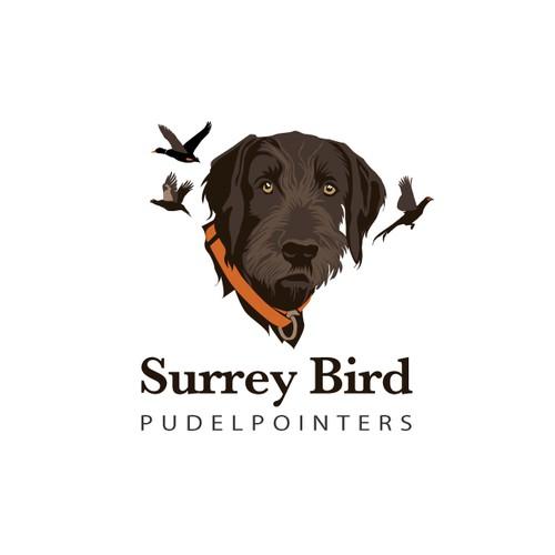 Surrey Bird Pudelpointers