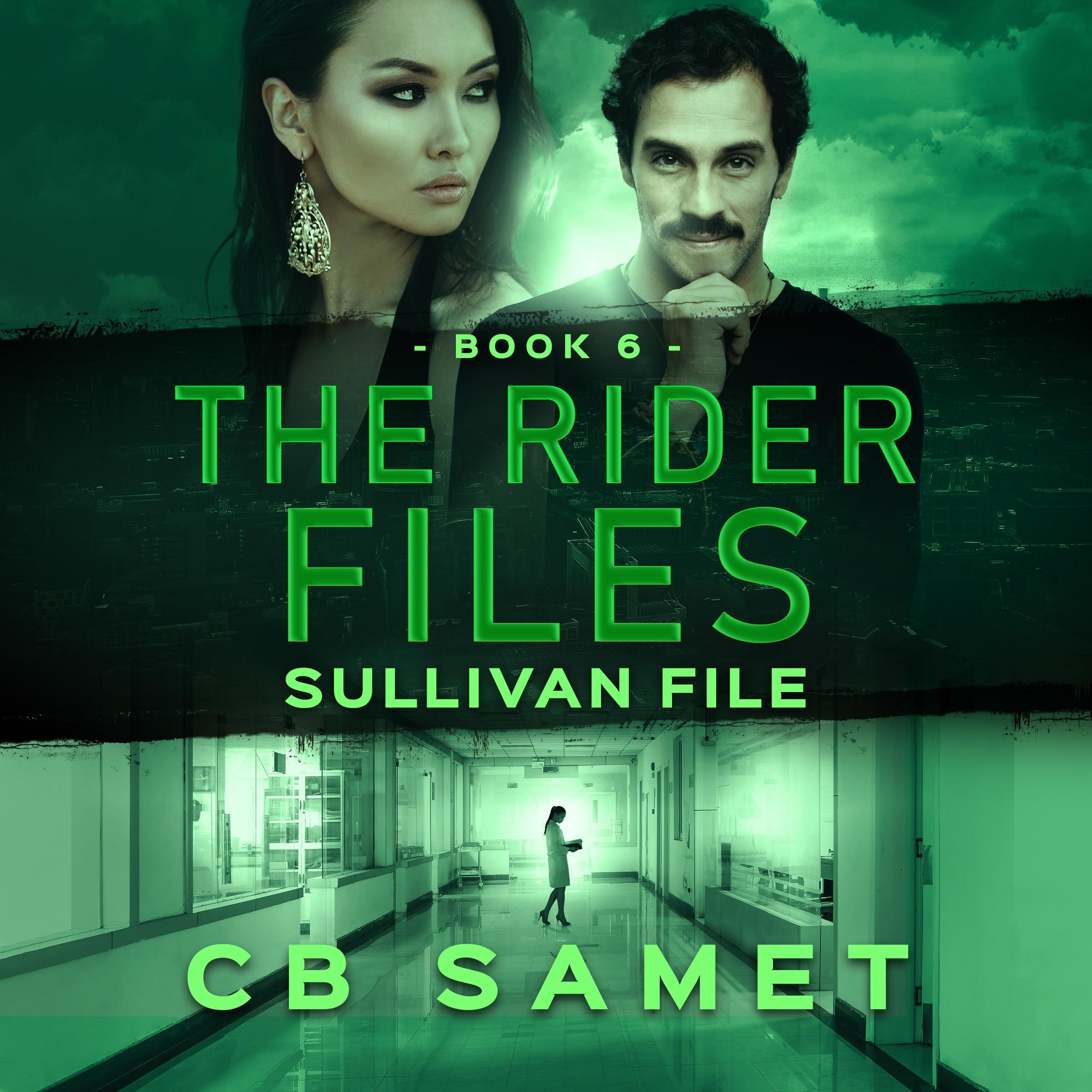 Sullivan File (The Rider Files Book 6)