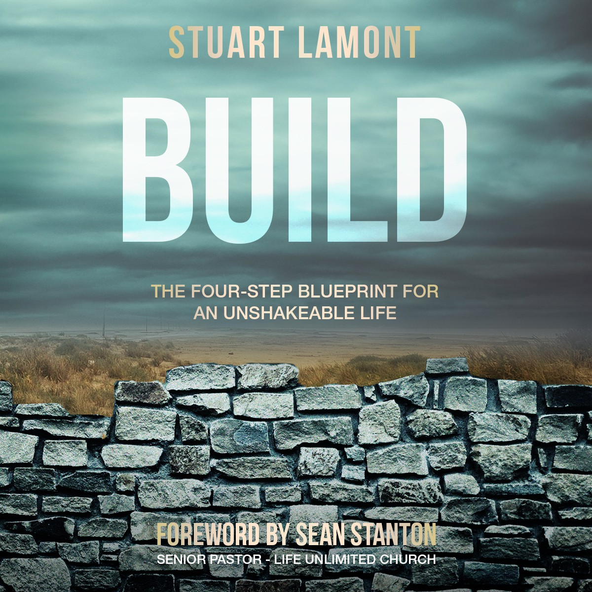 BUILD book cover - additional formats