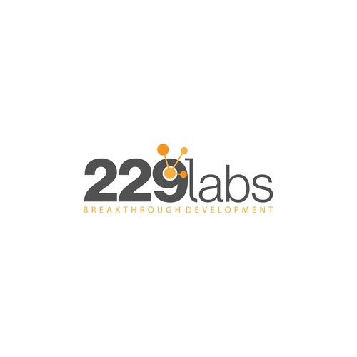 229 Labs Logo Design