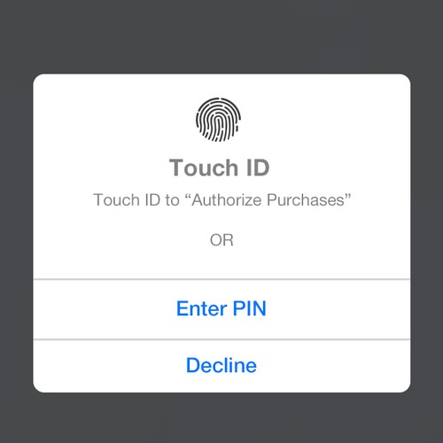 PIN Pad Entry to Authorize a Payment (2 simple screens)
