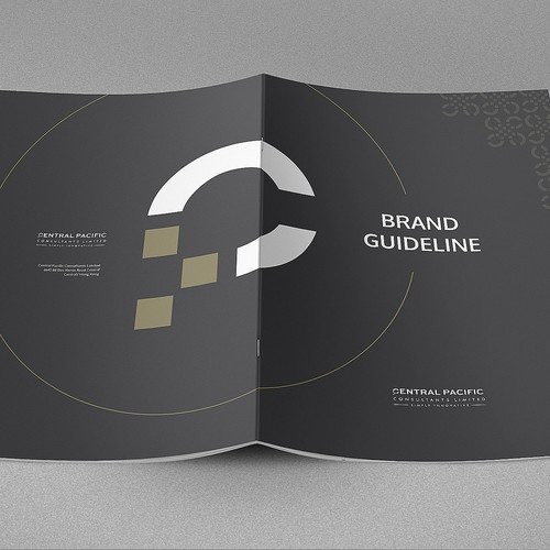Brand guide for Technology Consultancy business.