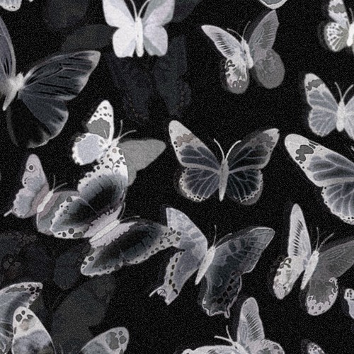X-Ray Butterfly Design 2