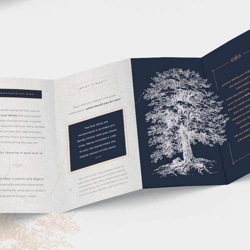 Timeless marketing quadfold brochure