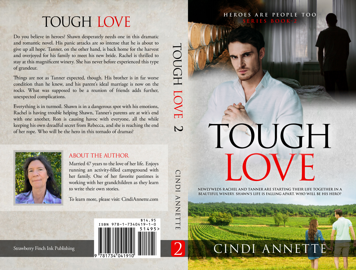 Paperback book cover and ebook cover