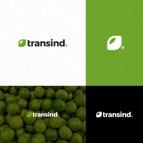 Transind Logo Design