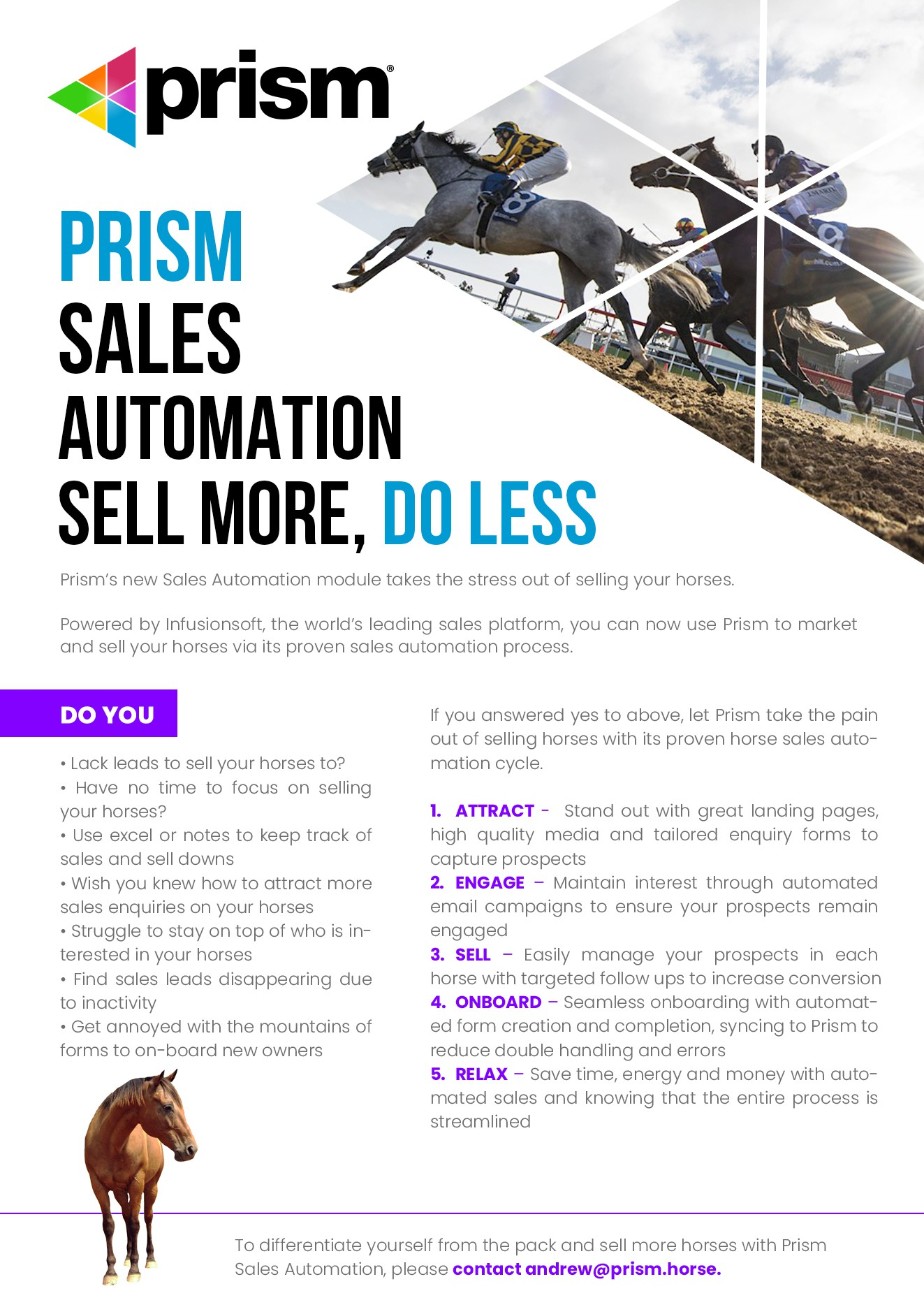 Design an eye-catching single page brochure for horse racing technology company