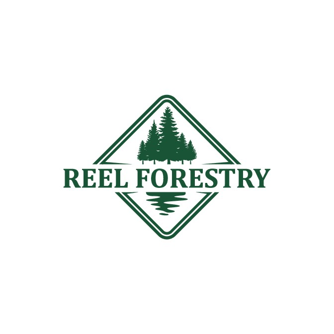 Logo for an up and coming sustainable forestry company.