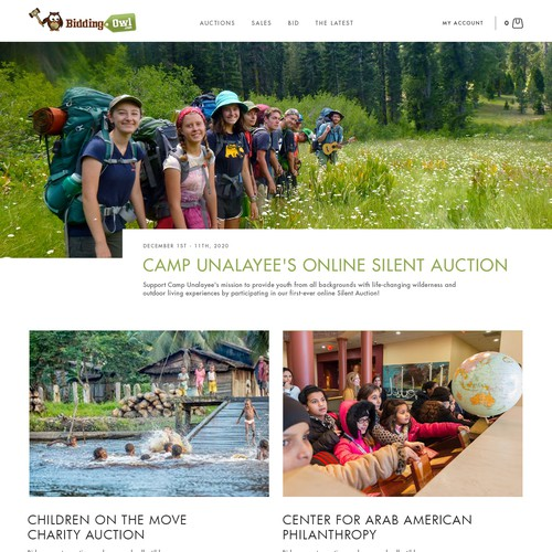 Leading Charity Auction Management Website looking for redesign