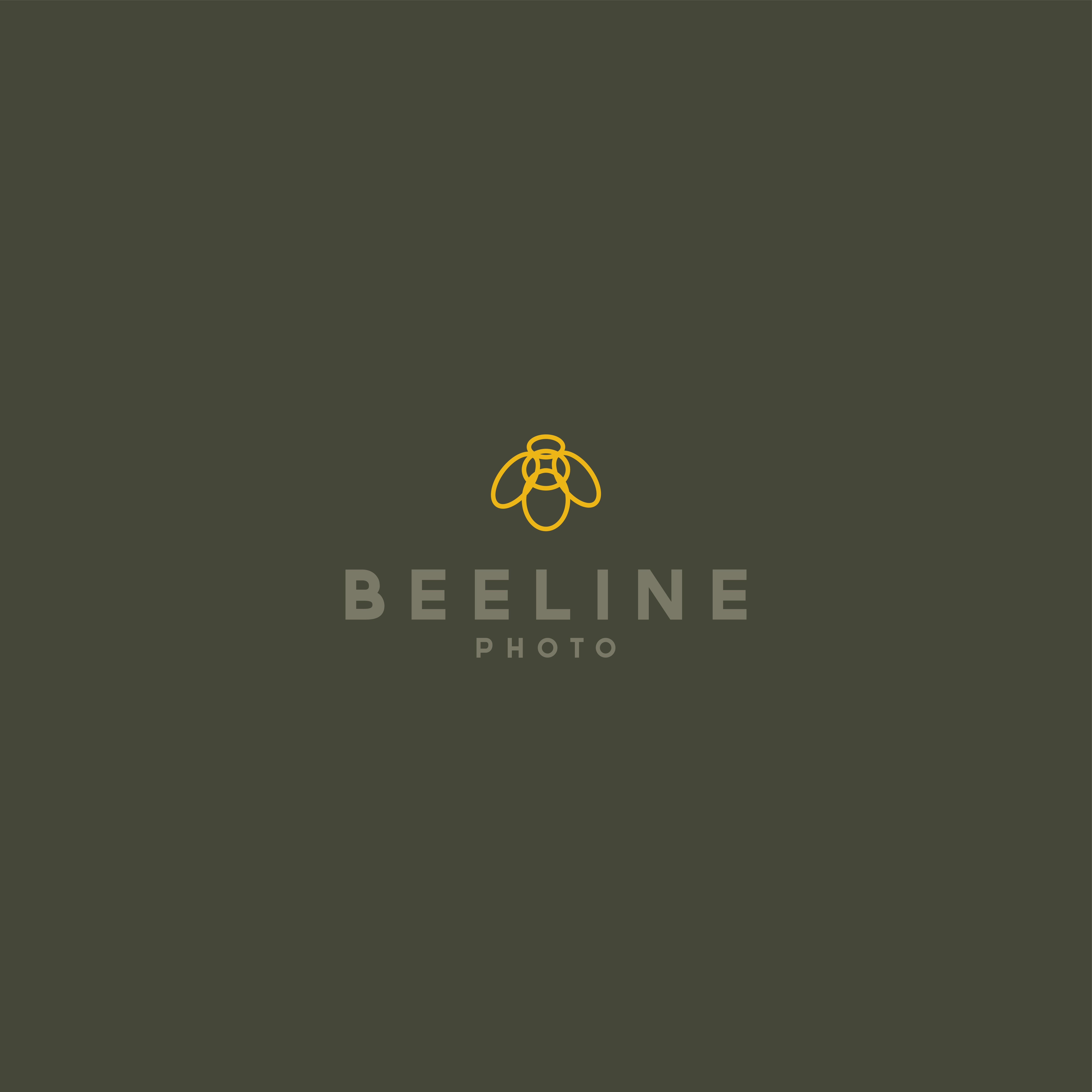 Create a high-end, modern, bold, hip, artistic logo for Beeline Photo