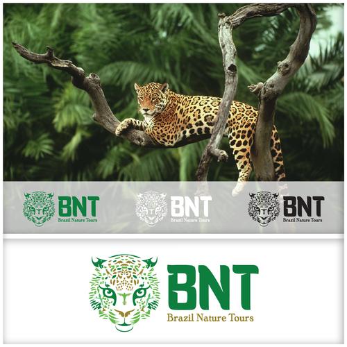Brazil Nature Tours