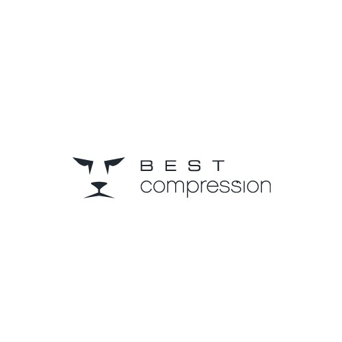Create the next logo for Best Compression