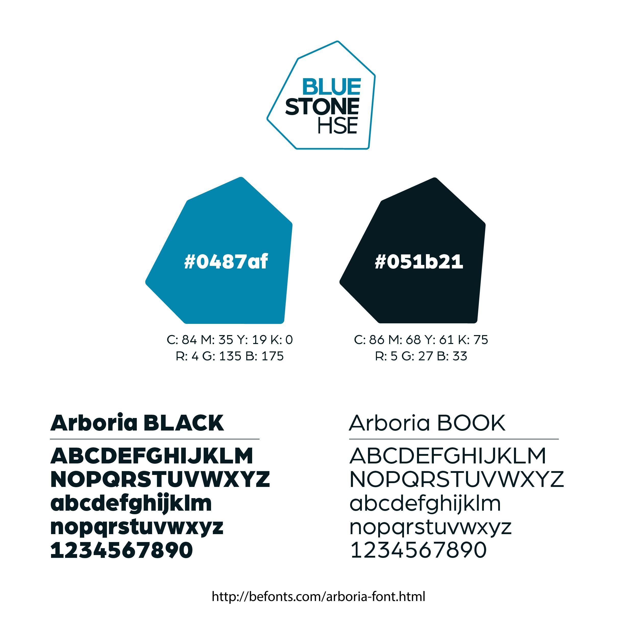 Create a clean flat logo for Bluestone HSE
