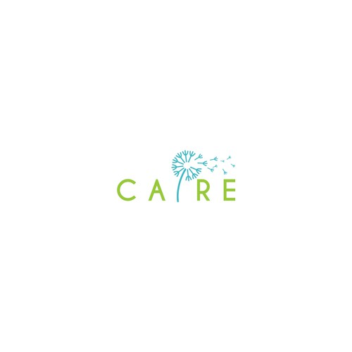 Logo for CAIRE
