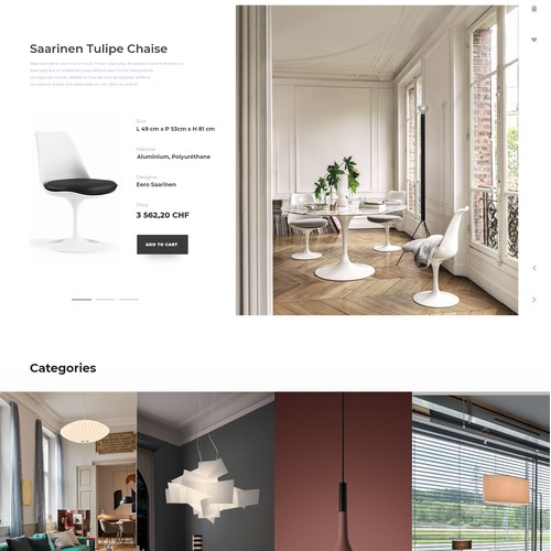 Furniture and lighting boutique design concept